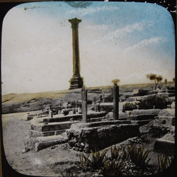 Diocletain's Pillar, Alexandria