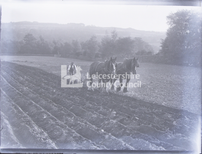 Ploughing field with two draft horses